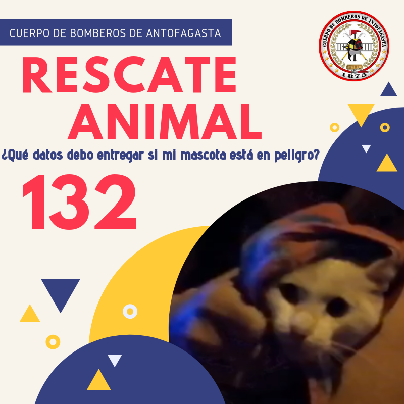 "INFORMACIÓN IMPORTANTE: ""Rescate Animal"""